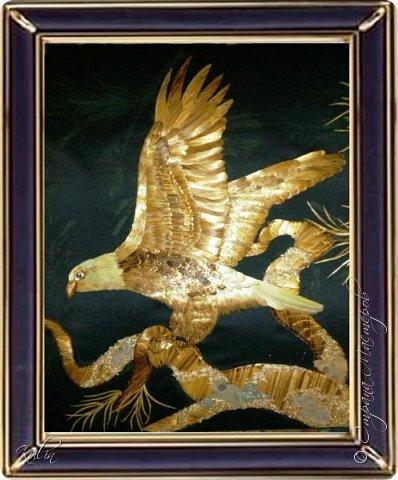 Считается, что белоголовый орлан символизирует силу, мужество, свободу и бессмертие