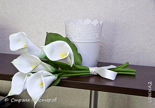 Сами цветы и листья-иранский фом, серединки(пестики)-зефирный. Тонировка масленой и сухой пастелью. фото 2