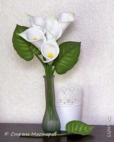 Сами цветы и листья-иранский фом, серединки(пестики)-зефирный. Тонировка масленой и сухой пастелью. фото 3