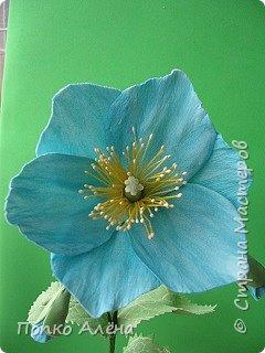 Здравствуйте, Мастера и мастерицы! Представляю Вам цветы из фоамирана.  Одуванчики. фото 8
