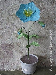 Здравствуйте, Мастера и мастерицы! Представляю Вам цветы из фоамирана.  Одуванчики. фото 9