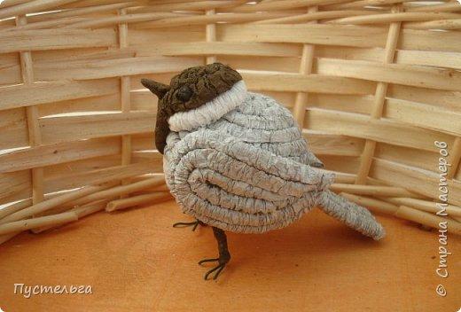 Буроголовая гаичка (пухляк) стала птицей 2017 года в России. На сайте Союза охраны птиц России можно побольше узнать об этой птичке. http://www.rbcu.ru/campaign/32901/ А мы сделаем её из гофротрубочек. Нам потребуется гофрированная бумага белого, серого и чёрного цвета, клей, ножницы, проволока, салфетки. фото 1