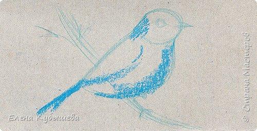 """Друзья, сейчас я увлеченно рисую пастелью, готовлю МК для вас на курсе <a href=""""http://stranamasterov.ru/workshop16"""">Сам себе художник</a> и хочу поделиться одним из заданий. Это Синяя Птица Удачи!   Мы желаем друг другу удачи по разным поводам. На праздники и в повседневной жизни, напутствуя кого-то в дорогу, на работу, экзамен, просто в любых начинаниях!  Размышляя о символах наших пожеланий, я всегда представляю яркую синюю птичку. Предлагаю вам изобразить свою птицу удачи в технике пастели.  фото 4"""