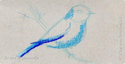 """Друзья, сейчас я увлеченно рисую пастелью, готовлю МК для вас на курсе <a href=""""http://stranamasterov.ru/workshop16"""">Сам себе художник</a> и хочу поделиться одним из заданий. Это Синяя Птица Удачи!   Мы желаем друг другу удачи по разным поводам. На праздники и в повседневной жизни, напутствуя кого-то в дорогу, на работу, экзамен, просто в любых начинаниях!  Размышляя о символах наших пожеланий, я всегда представляю яркую синюю птичку. Предлагаю вам изобразить свою птицу удачи в технике пастели.  фото 5"""