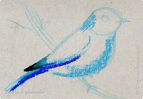 """Друзья, сейчас я увлеченно рисую пастелью, готовлю МК для вас на курсе <a href=""""http://stranamasterov.ru/workshop16"""">Сам себе художник</a> и хочу поделиться одним из заданий. Это Синяя Птица Удачи!   Мы желаем друг другу удачи по разным поводам. На праздники и в повседневной жизни, напутствуя кого-то в дорогу, на работу, экзамен, просто в любых начинаниях!  Размышляя о символах наших пожеланий, я всегда представляю яркую синюю птичку. Предлагаю вам изобразить свою птицу удачи в технике пастели.  фото 6"""
