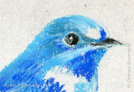 """Друзья, сейчас я увлеченно рисую пастелью, готовлю МК для вас на курсе <a href=""""http://stranamasterov.ru/workshop16"""">Сам себе художник</a> и хочу поделиться одним из заданий. Это Синяя Птица Удачи!   Мы желаем друг другу удачи по разным поводам. На праздники и в повседневной жизни, напутствуя кого-то в дорогу, на работу, экзамен, просто в любых начинаниях!  Размышляя о символах наших пожеланий, я всегда представляю яркую синюю птичку. Предлагаю вам изобразить свою птицу удачи в технике пастели.  фото 11"""