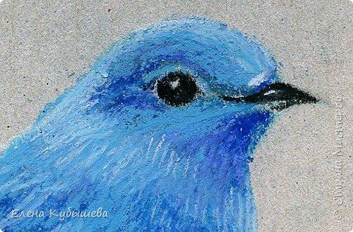 """Друзья, сейчас я увлеченно рисую пастелью, готовлю МК для вас на курсе <a href=""""http://stranamasterov.ru/workshop16"""">Сам себе художник</a> и хочу поделиться одним из заданий. Это Синяя Птица Удачи!   Мы желаем друг другу удачи по разным поводам. На праздники и в повседневной жизни, напутствуя кого-то в дорогу, на работу, экзамен, просто в любых начинаниях!  Размышляя о символах наших пожеланий, я всегда представляю яркую синюю птичку. Предлагаю вам изобразить свою птицу удачи в технике пастели.  фото 16"""