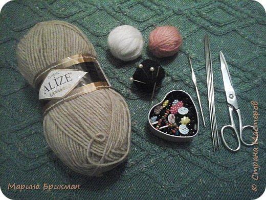 Здравствуйте, друзья! Рада представить вам мастер-класс по вязанию спицами игрушек. Сегодня это будет котик с карамелькой. фото 2