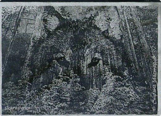 ПЕТУХ, КРОЛИК,ВОЛК И МАЛЬЧИК(ФРАГМЕНТ КАРТИНЫ) фото 4