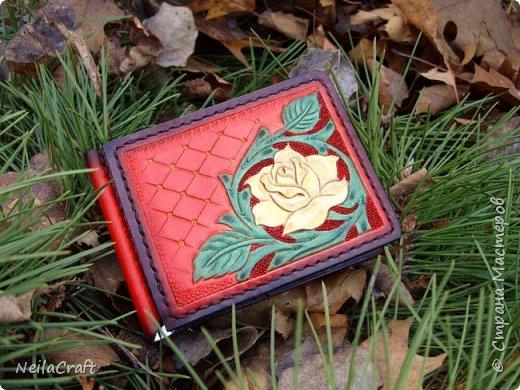 Шеридан - это цветы которые цветут на коже фото 8