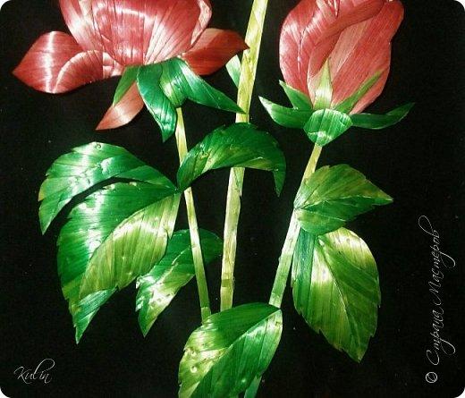 Роза Образ розы многозначен: она является символом красоты, совершенства, радости, любви, блаженства, гордости, мудрости, тишины, тайны. С нею связываются образы мистического центра, сердца, рая, возлюбленной, Венеры, красавицы, католической церкви, Богоматери. Преимущественно роза выступает как символ любви и радости  фото 3