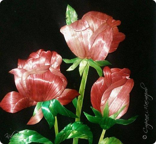 Роза Образ розы многозначен: она является символом красоты, совершенства, радости, любви, блаженства, гордости, мудрости, тишины, тайны. С нею связываются образы мистического центра, сердца, рая, возлюбленной, Венеры, красавицы, католической церкви, Богоматери. Преимущественно роза выступает как символ любви и радости  фото 2