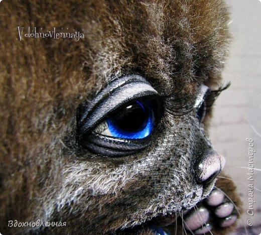 Кошечка Александра сшита полностью вручную из альпаки с мягким, пушистым и длинным ворсом. Глаза стеклянные, очень красивого голубого цвета. Пяточки, нос и веки сделаны из натуральной кожи по моей авторской методике. Хвостик на проволочном каркасе. Соединения лапок и головы выполнены на 6 шплинтах. Головушка мило качается. Кошечка может самостоятельно стоять. Рост кошечка сидя 19 см, а стоя - 22 см фото 12