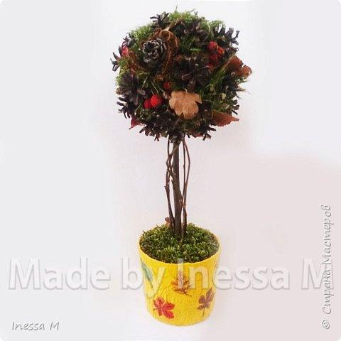 Осенний топиарий. В основе природный материал-шишки, мох, ветки, листья... фото 1