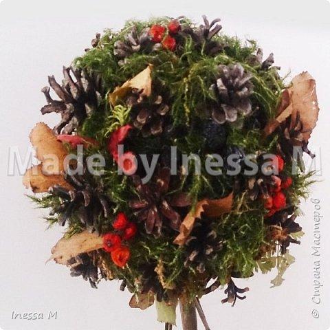Осенний топиарий. В основе природный материал-шишки, мох, ветки, листья... фото 2