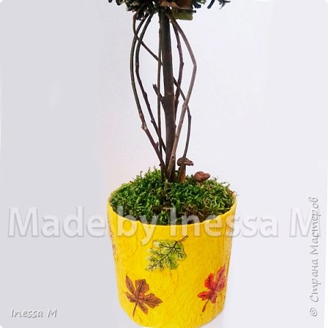 Осенний топиарий. В основе природный материал-шишки, мох, ветки, листья... фото 3