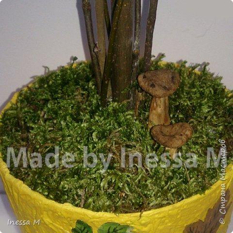 Осенний топиарий. В основе природный материал-шишки, мох, ветки, листья... фото 4