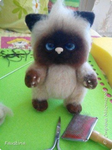 Здравствуйте,дорогие мастера! Продолжаем создавать замечательного котеночка Чарлика! Начало в записи рэгдолл Чарли. фото 13