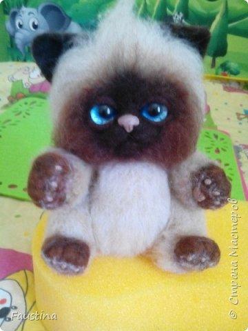 Здравствуйте,дорогие мастера! Продолжаем создавать замечательного котеночка Чарлика! Начало в записи рэгдолл Чарли. фото 15