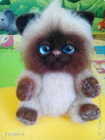 Здравствуйте,дорогие мастера! Продолжаем создавать замечательного котеночка Чарлика! Начало в записи рэгдолл Чарли. фото 17