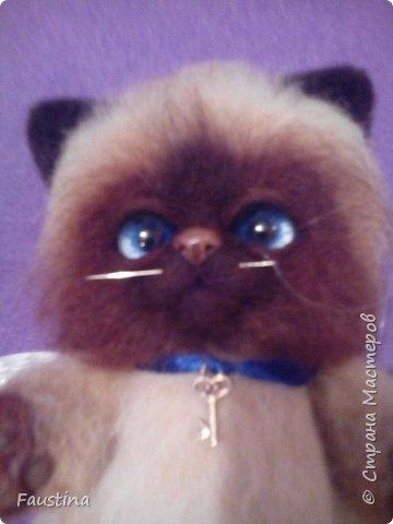 Здравствуйте,дорогие мастера! Продолжаем создавать замечательного котеночка Чарлика! Начало в записи рэгдолл Чарли. фото 18