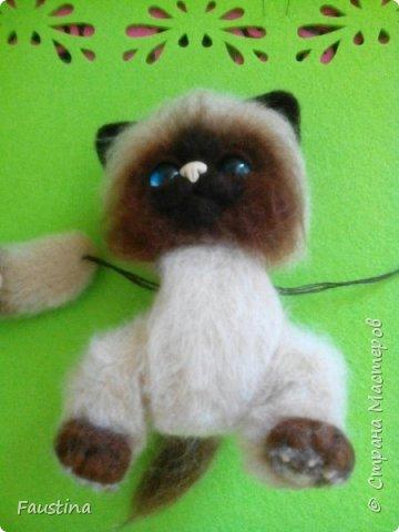 Здравствуйте,дорогие мастера! Продолжаем создавать замечательного котеночка Чарлика! Начало в записи рэгдолл Чарли. фото 10