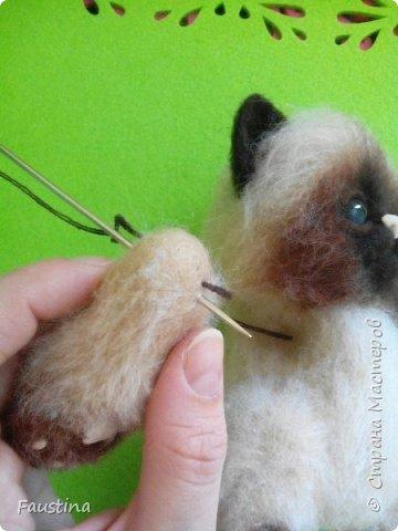 Здравствуйте,дорогие мастера! Продолжаем создавать замечательного котеночка Чарлика! Начало в записи рэгдолл Чарли. фото 7
