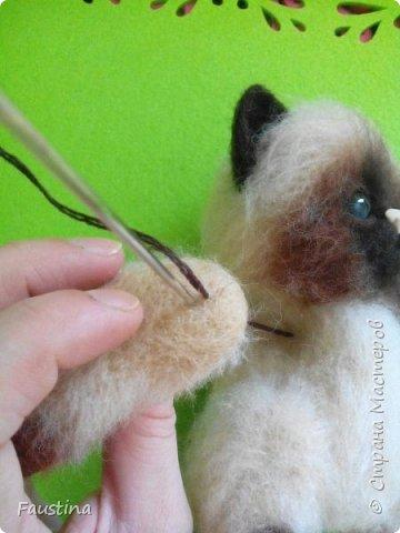 Здравствуйте,дорогие мастера! Продолжаем создавать замечательного котеночка Чарлика! Начало в записи рэгдолл Чарли. фото 6