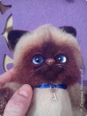 Здравствуйте,дорогие мастера! Продолжаем создавать замечательного котеночка Чарлика! Начало в записи рэгдолл Чарли. фото 20