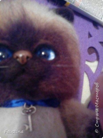 Здравствуйте,дорогие мастера! Продолжаем создавать замечательного котеночка Чарлика! Начало в записи рэгдолл Чарли. фото 19