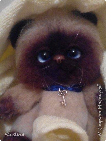 Здравствуйте,дорогие мастера! Продолжаем создавать замечательного котеночка Чарлика! Начало в записи рэгдолл Чарли. фото 21