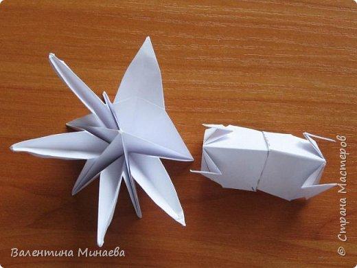 На авторство особо не претендую, возможно такие цветочки уже где-нибудь появлялись, не могу утверждать. Соединительные модули по сборке очень похожи на модуль кусудамы Каркасс Екатерины Лукашевой, только крепление осуществляется по-другому. Короче, такой вот гибрид из двух разных модулей.    Name: Blooming icosahedron - I  Designer: Valentina Minayeva Parts: 12 (pentagons) Paper: 6,4 x 6,4 х 6,4 х 6,4 х 6,4 Parts: 30 (squares) Paper: 6,4 х 6,4 Final height: ~ 10,0 cm without glue фото 96