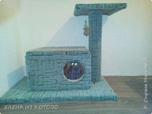 """Когда в нашем доме появился этот """"монстр"""")))) встал вопрос о его размещении))) фото 4"""