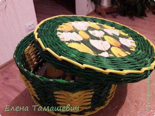 Желтые тюльпаны.  фото 2