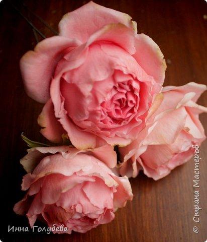 Привет всем жителям! Сегодня пионовидные розы и небольшой МК по ним) фото 4