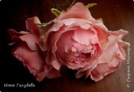 Привет всем жителям! Сегодня пионовидные розы и небольшой МК по ним) фото 1
