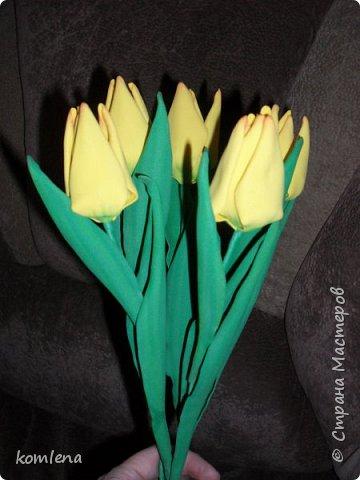 горные тюльпаны по мастер классу Елизаветы Саркисовой.