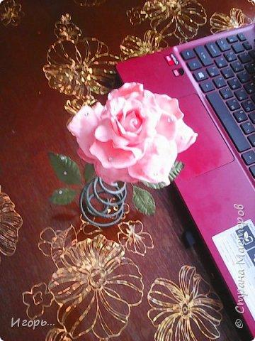 """Сувенир к 8 марта """"Роза на стебле"""". Изготавливается очень просто: сначала по конусу скручивается проволока, затем обматывается тейп лентой, отдельно изготовили розу из фоамирана, листья готовые купленные, немного розу затонировали тенями закрепив лаком для волос, украсили стразами.  фото 2"""