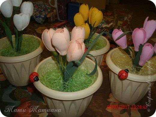 Весна фото 2