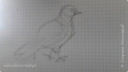"""Сегодня вам покажу, как с помощью карандаша рисовать голубей – самых мирных существ в мире. Ведь даже если они вам нагадят на голову, они сделают это мирно! Для начала нарисуем вот такую """"заготовку"""". фото 3"""