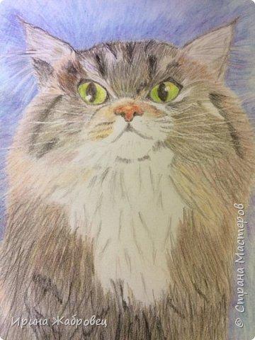 Рисунок акварельными карандашами по фотографии. фото 1