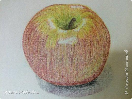 Рисунок акварельными карандашами по фотографии. фото 10
