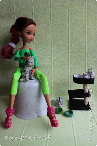 """""""Всем привет! Меня зовут Диана и я-заводчица кошек породы """"британская короткошёрстная"""". Котёнок этой породы снялся в рекламе  кошачьего корма """"Вискас"""". фото 3"""