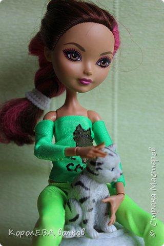 """""""Всем привет! Меня зовут Диана и я-заводчица кошек породы """"британская короткошёрстная"""". Котёнок этой породы снялся в рекламе  кошачьего корма """"Вискас"""". фото 2"""