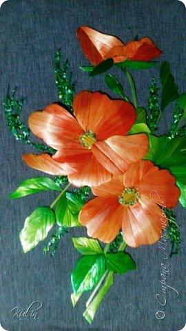 Шиповник- дикая роза... И в этом своя прелесть, как красив шиповник в цвету! фото 2