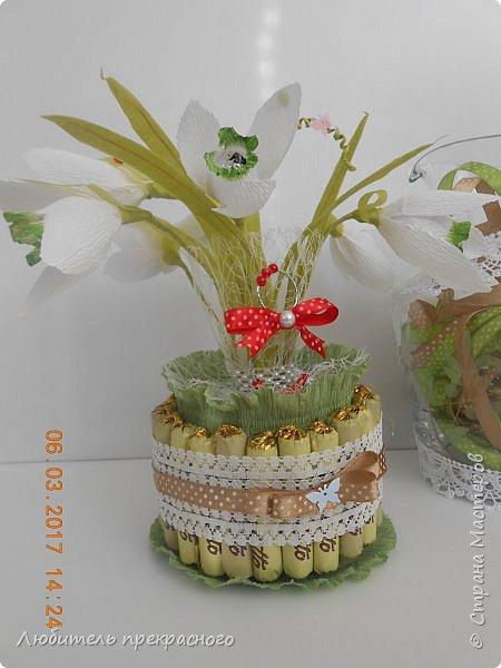 Доброго времени суток!!!Вот такие композиции  для подарков были составлены из различных первоцветов... фото 7