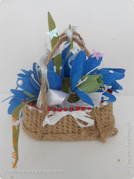 Доброго времени суток!!!Вот такие композиции  для подарков были составлены из различных первоцветов... фото 9