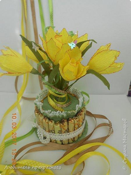 Доброго времени суток!!!Вот такие композиции  для подарков были составлены из различных первоцветов... фото 14