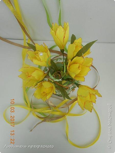 Доброго времени суток!!!Вот такие композиции  для подарков были составлены из различных первоцветов... фото 15