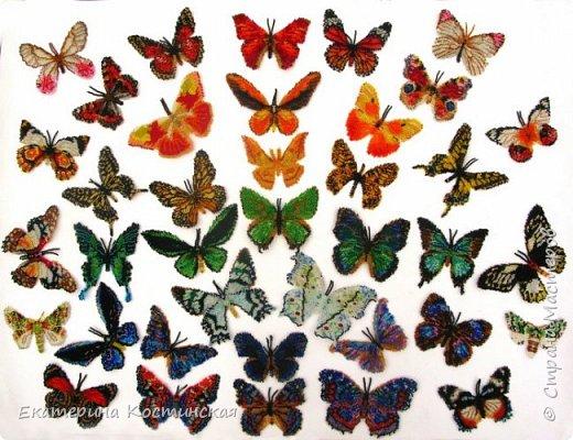 Бисерные бабочки. Коллекция 62 больших